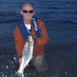 Fedtfinnefisker