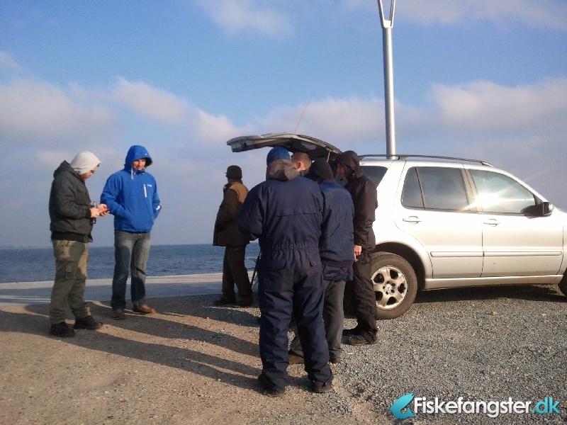 Anden art fra Århus havn Pier 4., Østjylland -  fanget på Andet # 326