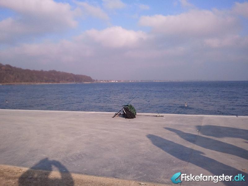 Anden art fra Århus havn Pier 4., Østjylland -  fanget på Andet # 327
