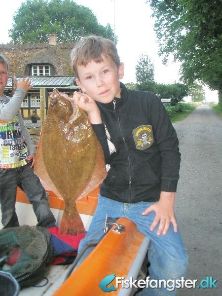 Skrubbe på 54 cm og 1.30 kg fra assens, Fyn -  fanget på Sandorm # 384
