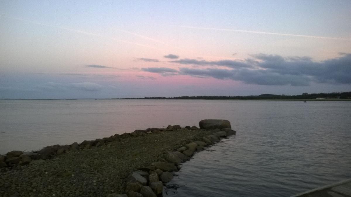 Havørred på 42 cm og 0.78 kg fra Udmunding af Randers fjord, Østjylland -  fanget på Kystflue # 3027