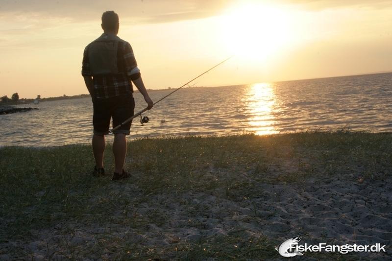 Hornfisk på 65 cm og 0.60 kg fra Den permanente, Århus, Østjylland -  fanget på Andet # 60