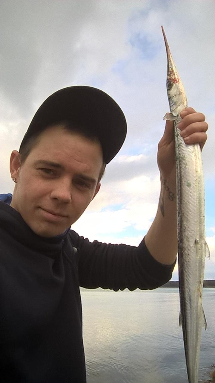 Hornfisk på 68 cm og 420 gram fra Næsgård, Lolland-Falster -  fanget på Møre Silda blink 22 gr # 5778