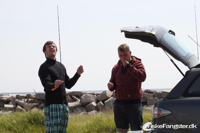 Hornfisk fra Norsminde, Østjylland -  fanget på Blink # 35