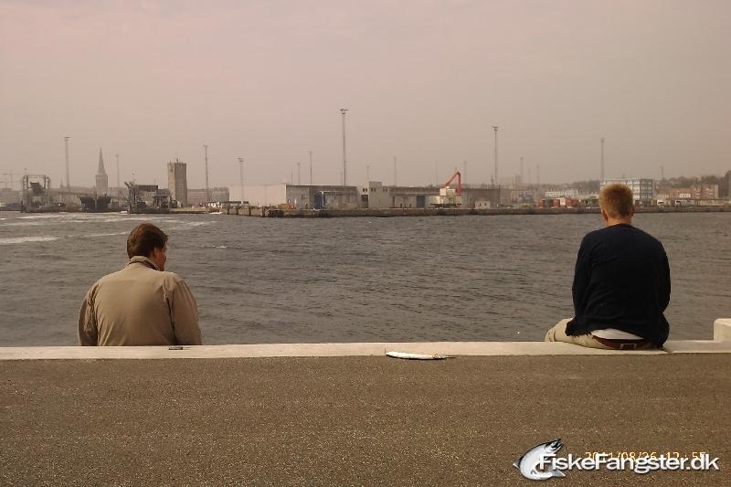 Makrel på 0.70 kg fra Århus Havn, Østjylland -  fanget på Andet # 167