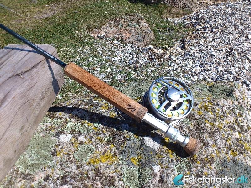 Havørred på 42 cm fra Bremslev bakker, Mariager Fjord, Østjylland -  fanget på Kystflue # 655