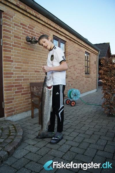 Havørred på 83 cm og 5.30 kg fra Lindenborg Å, Nordjylland -  fanget på Lakseflue # 548