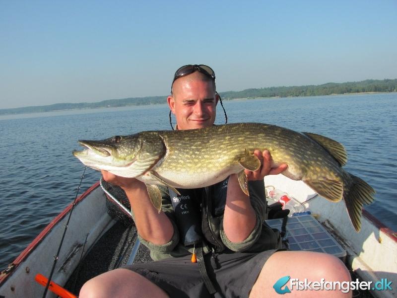 Gedde på 102 cm og 8.40 kg fra lokal sø, Midtjylland -  fanget på Wobler # 862