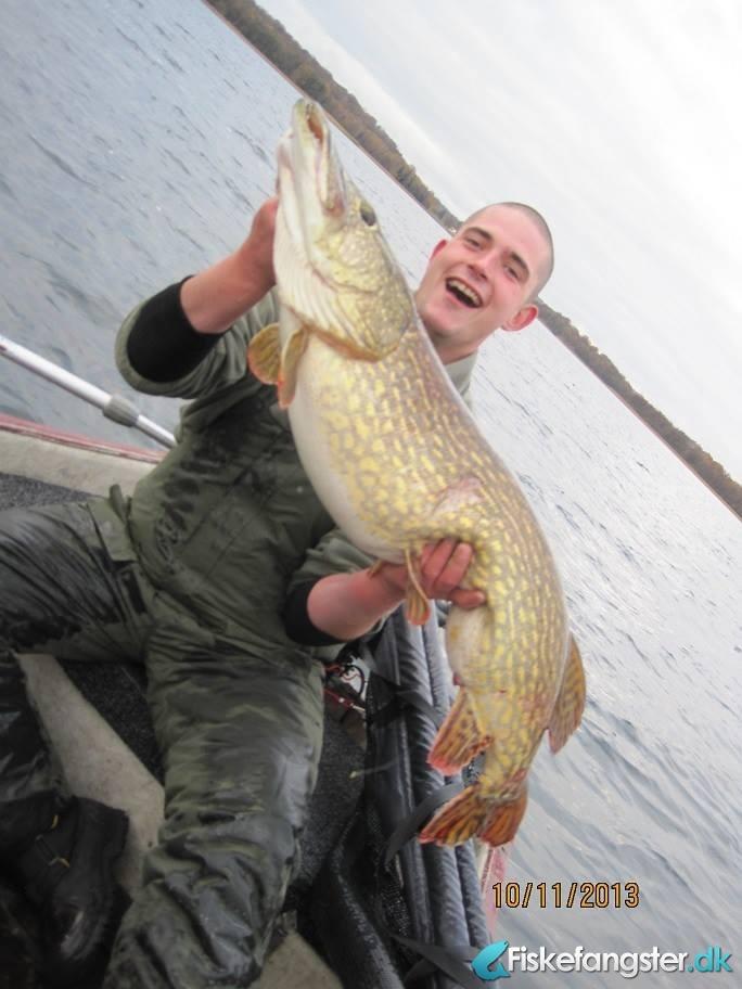 Gedde på 110 cm og 12.50 kg fra stor sø., Nordjylland -  fanget på Levende agn # 2391