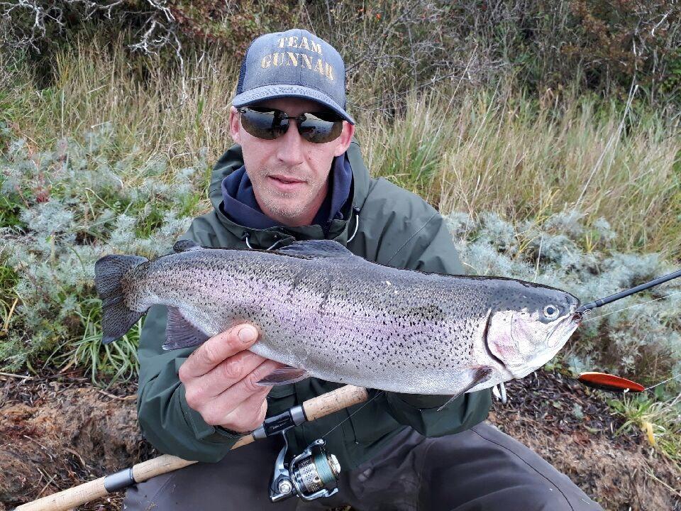 Regnbueørred på 46 cm og 1.20 kg fra Fyn -  fanget på Flabåk # 6898