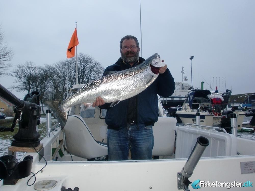 Laks på 12.20 kg fra østersøen ud for møn, Sjælland -  fanget på Blink # 1606