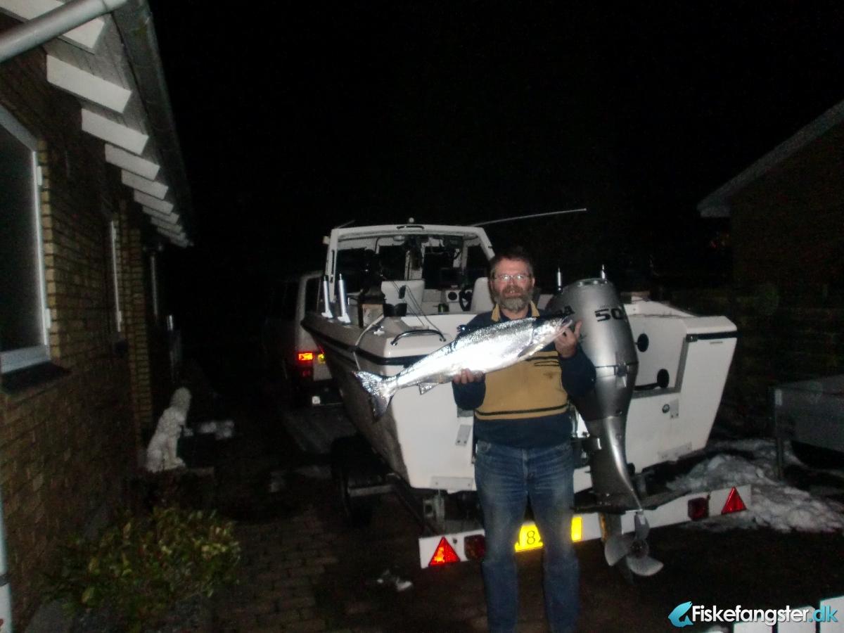 Laks på 4.60 kg fra østersøen, Sjælland -  fanget på Blink # 1610