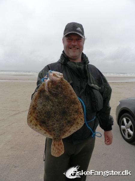 Pighvar på 46 cm og 1.95 kg fra Vesterhavet, Vestjylland -  fanget på Død agn # 29