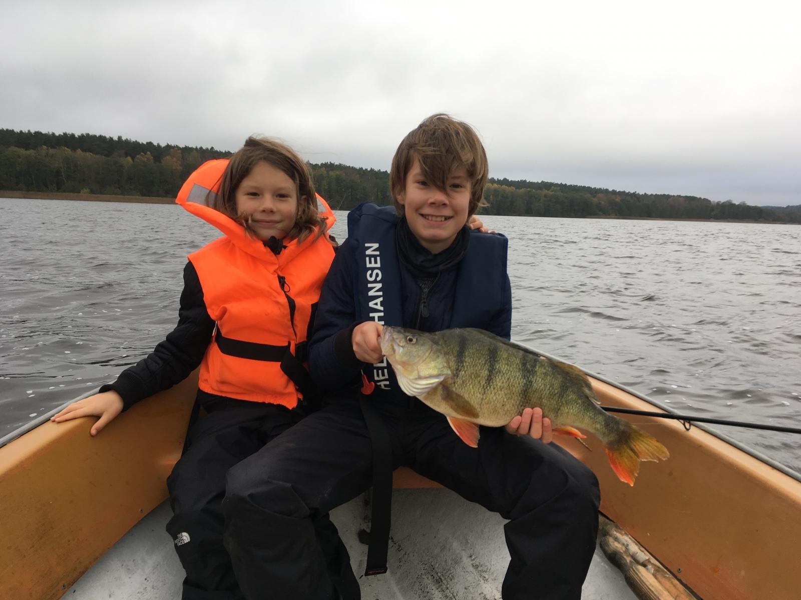 Aborre på 49 cm og 2.17 kg fra Privat sø på Djursland, Østjylland -  fanget på Wobler # 7033