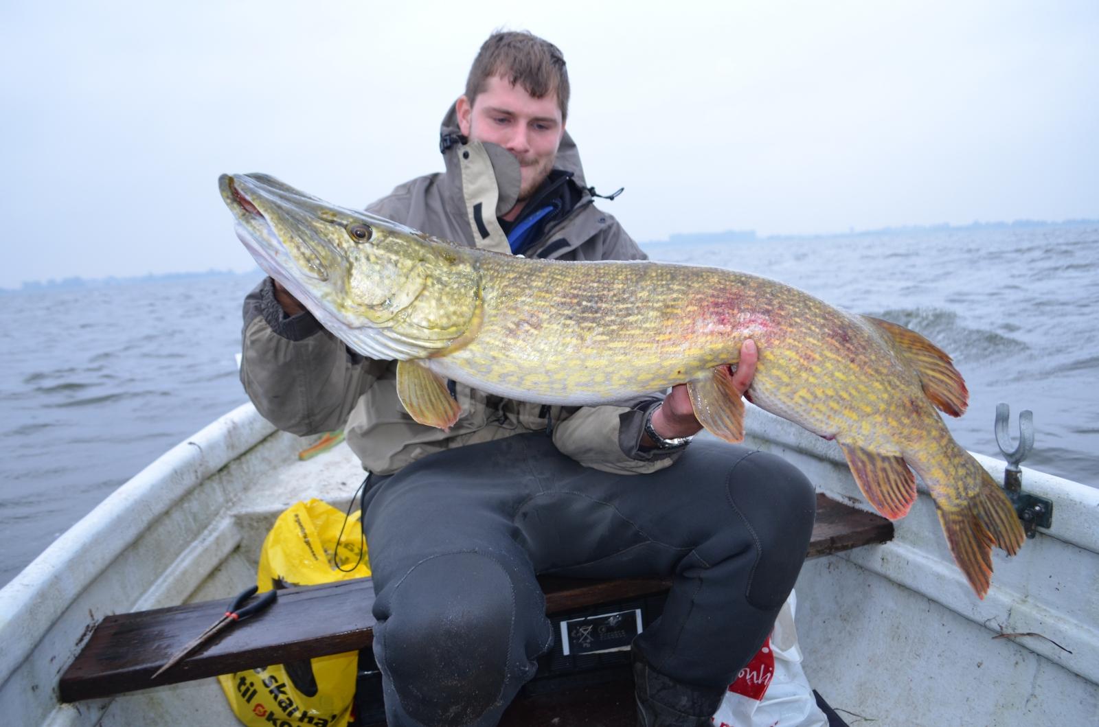 Gedde på 122 cm og 13.00 kg fra Et godt gedde spot, Sjælland -  fanget på Wobler # 4783