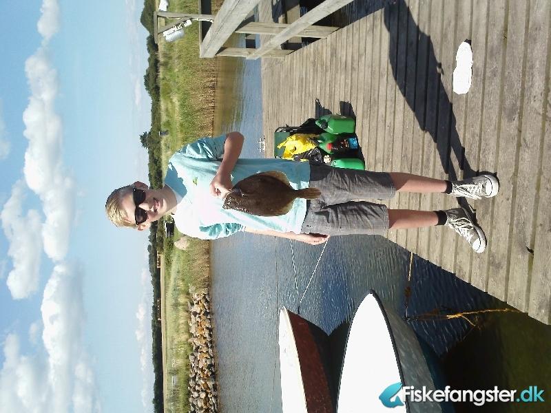 Rødspætte på 40 cm og 0.87 kg fra Ikke angivet, Nordjylland -  fanget på Reje # 1030