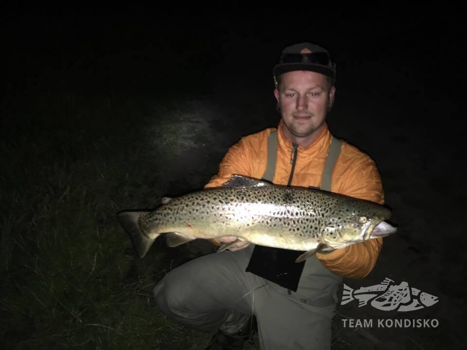 Havørred på 67 cm og 4.10 kg fra Horsens fjord, Østjylland -  fanget på Brenda # 6819