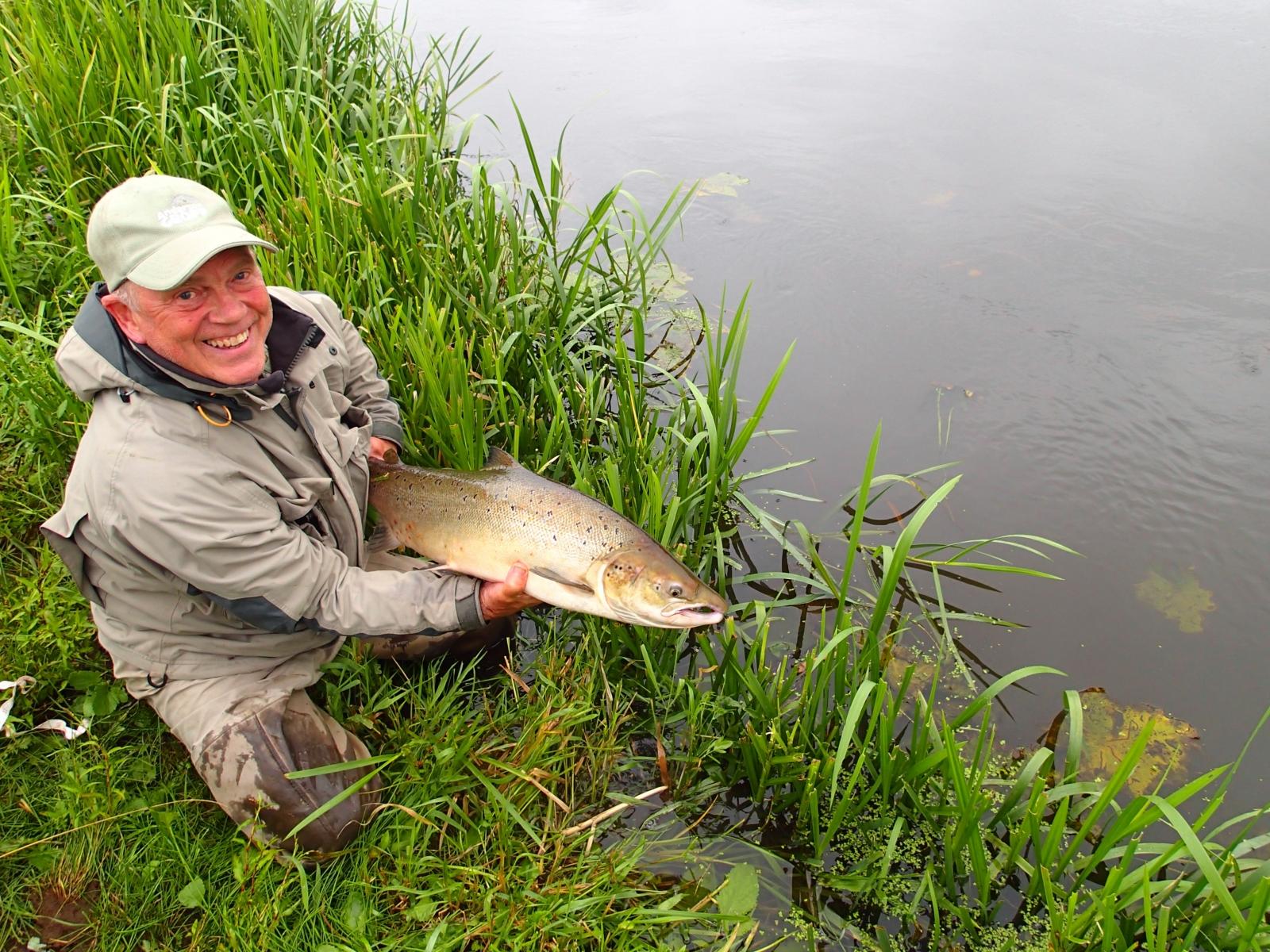 Laks på 91 cm og 7.50 kg fra Stor åen, Vestjylland -  fanget på Spinner # 7311