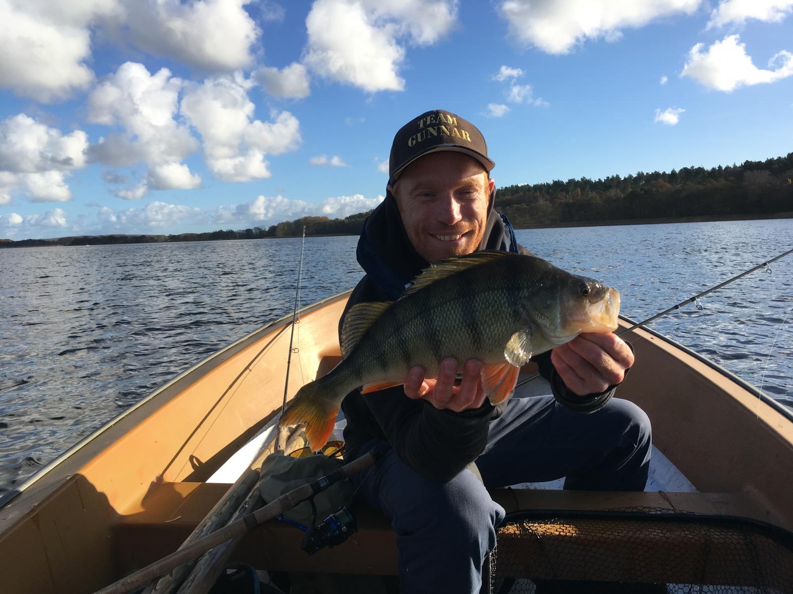 Aborre på 1.50 kg fra Privat sø, Østjylland -  fanget på Wobler # 7026