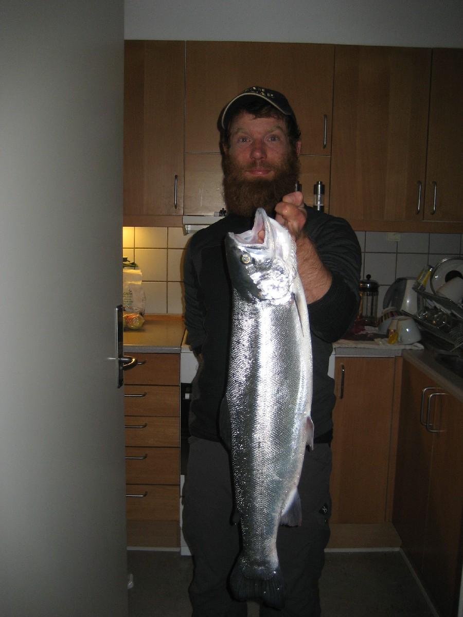 Regnbueørred på 70 cm og 3.20 kg fra Langeland, Andet -  fanget på Blink # 3849