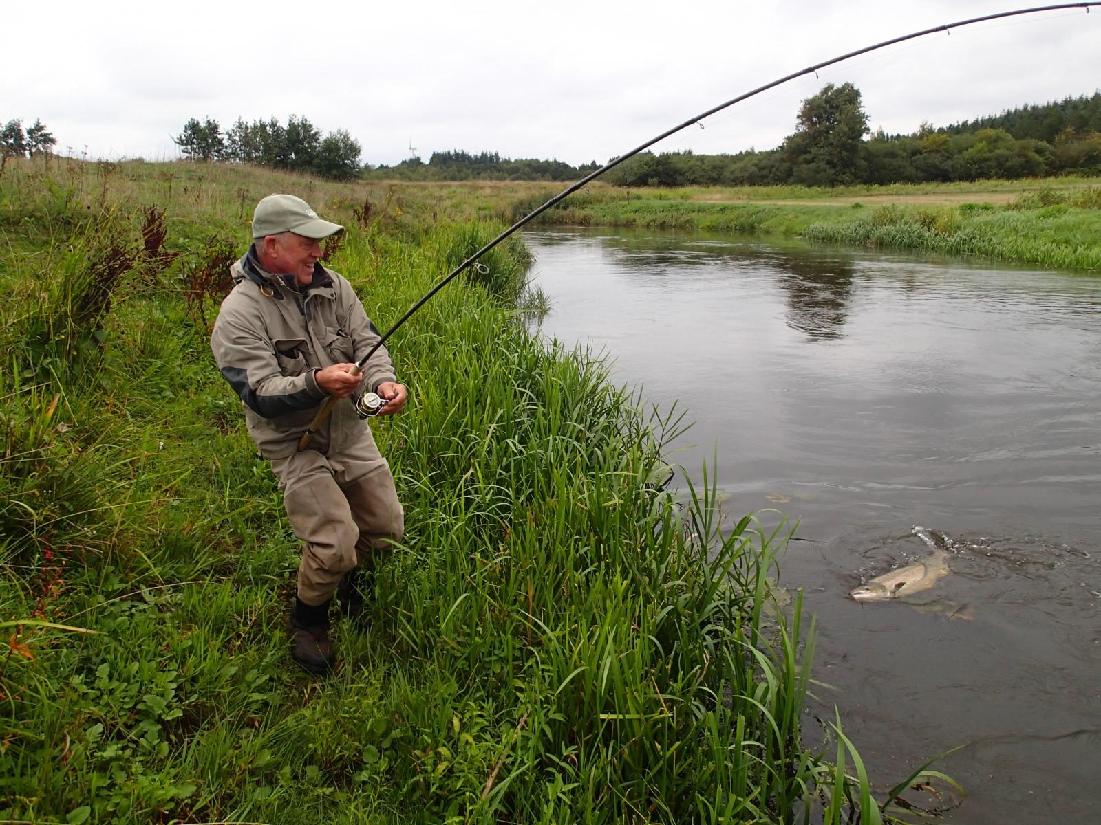 Laks på 91 cm og 7.50 kg fra Stor åen, Vestjylland -  fanget på Spinner # 7312