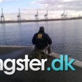 Makrel på 28 cm og 300 gram fra århus havn, Østjylland -  fanget på Makrelforfang # 1263