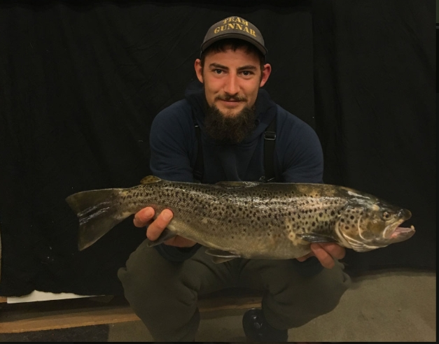 Havørred på 53 cm og 1.73 kg fra Odense fjord, Fyn -  fanget på Stripper # 6964