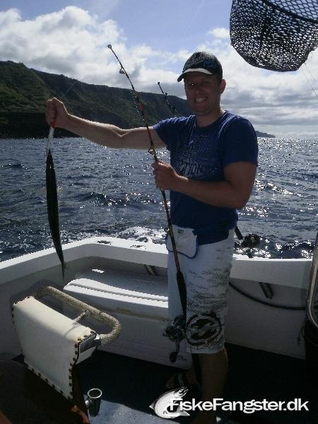 Anden art på 80 cm og 1.50 kg fra Azorerne, Portugal, Udlandet -  fanget på Wobler # 173