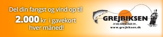 Grejbiksen.dk sponsorere månedens fangst